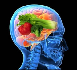 foods for healthy brain