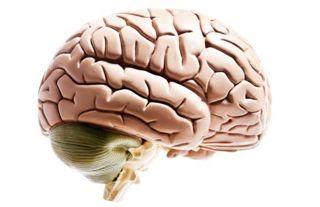 leaky brain syndrome
