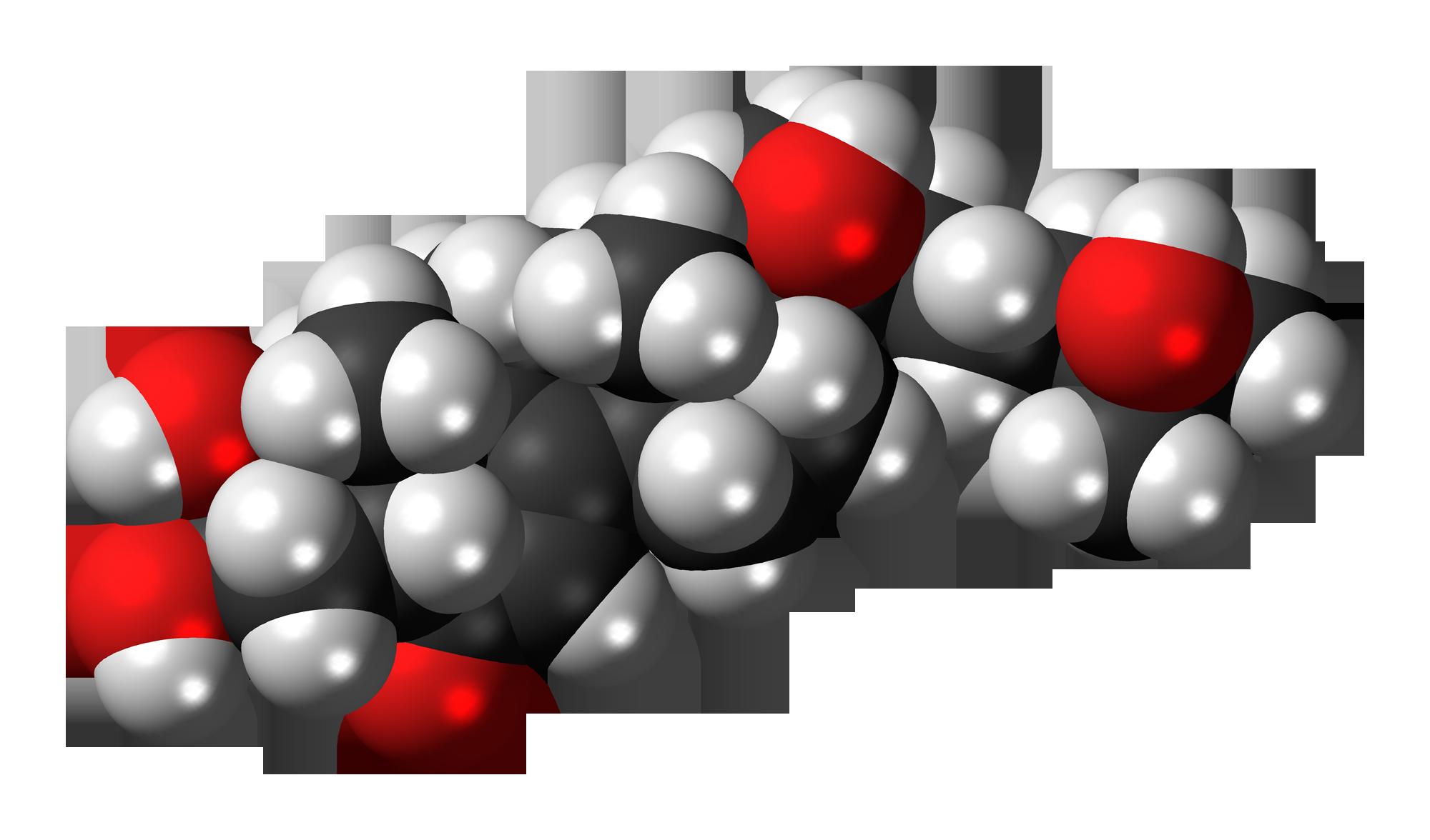 20-Hydroxyecdysone: The Pro-Anabolic, Plant Steroid