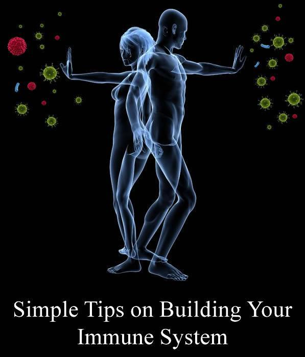 Building the Immune System with Botanicals and Antioxidants