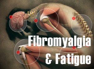 fibromyalga_&_fatigue